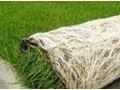常用无土栽培基质 (5)